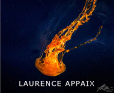 Laurence Appaix